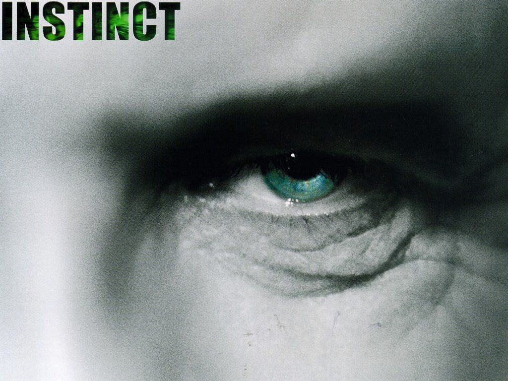 Instinct (1024x768 - 209 KB)