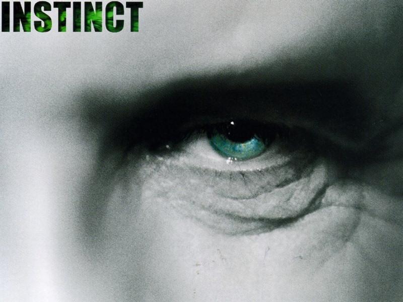 Instinct (800x600 - 127 KB)