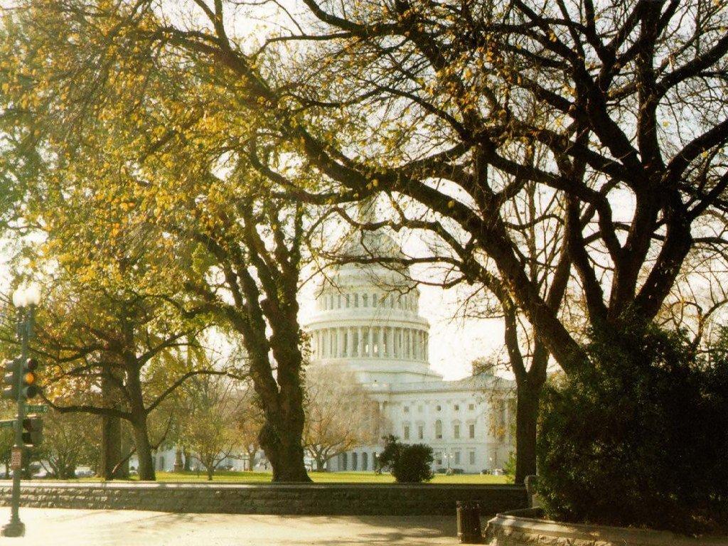 Capitol (1024x768 - 270 KB)