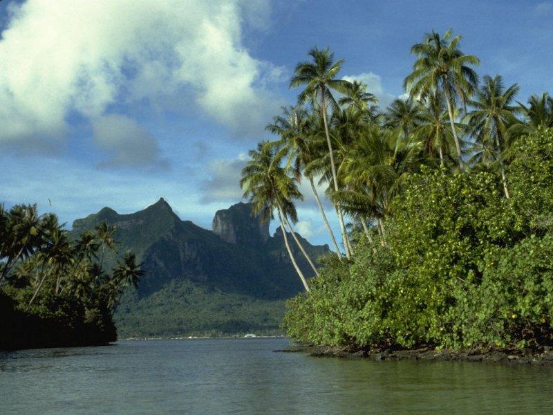 Bora Bora (800x600 - 104 KB)