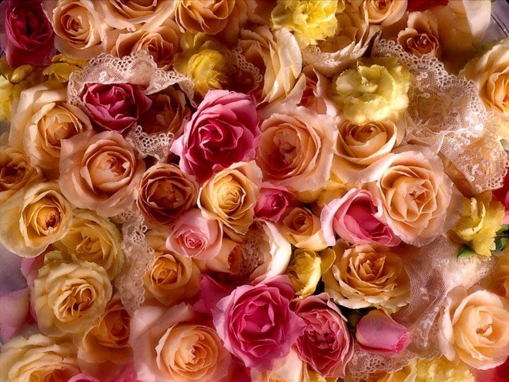 Bouquet (1024x768 - 188 KB)