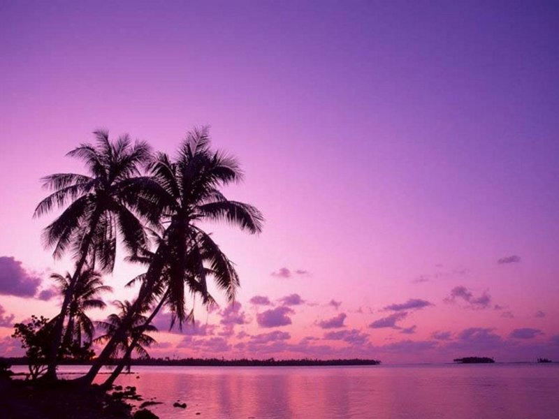 Tramonto tropicale (800x600 - 63 KB)