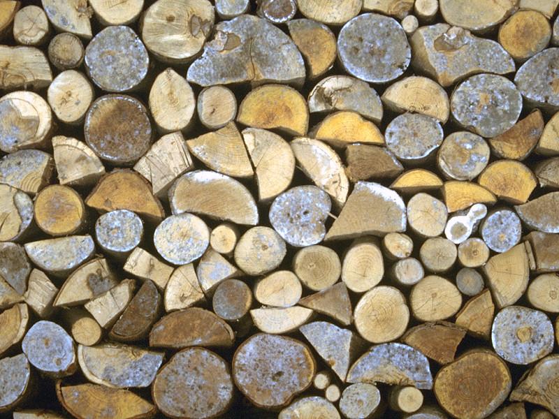 Catasta di legna (800x600 - 250 KB)
