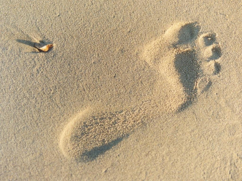 Orma sulla sabbia (800x600 - 222 KB)
